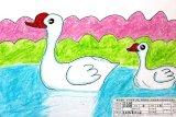《白天鹅》图片